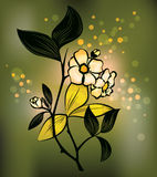 Planta de té Imagen de archivo libre de regalías