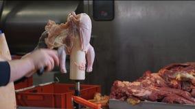 Planta de tratamiento de la comida, carne del pollo Ciérrese para arriba de las manos del hombre que cortan el pollo con el cuchi almacen de video