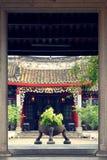 Planta decorativa delante de la entrada de la casa imagen de archivo