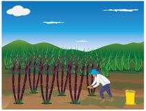 Planta del bastón del abono del agrónomo ilustración del vector