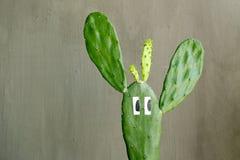 Planta del cactus con los ojos divertidos en muro de cemento gris imagen de archivo libre de regalías
