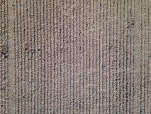 Planta del cemento, textura Fotos de archivo