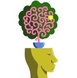 Planta del cerebro Fotografía de archivo