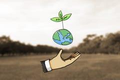 Planta del control de la mano en la tierra Imagen de archivo