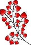 Planta del corazón Foto de archivo