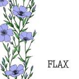 Planta del lino con la flor, el brote y la hoja stock de ilustración