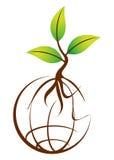 Planta do globo Foto de Stock Royalty Free