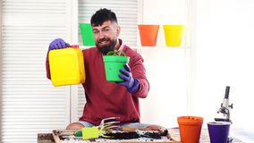 Planta do homem e para fertilizar brotos em um potenciômetro Conceito de adubos naturais para o crescimento vegetal O jardineiro  vídeos de arquivo