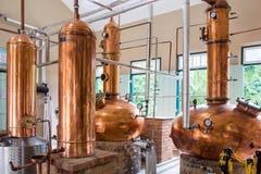 Planta do licor brasileiro da cana-de-açúcar do cachaca Imagens de Stock