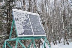Planta do painel solar sob a neve na floresta do inverno fotografia de stock