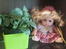 Planta e boneca Imagem de Stock Royalty Free