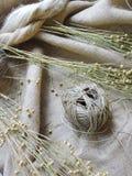 Planta e hilo del lino en tela Imagen de archivo