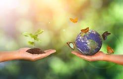 Planta e terra na mão no fundo verde da natureza imagens de stock royalty free