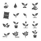 Planta e vetor ajustado ícones da licença Foto de Stock Royalty Free