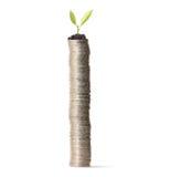 A planta em moedas de ouro e representa-as graficamente foto de stock