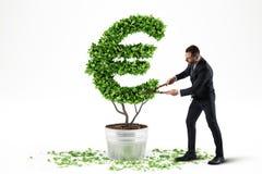 Planta em pasta com forma de EUR rendição 3d Fotografia de Stock