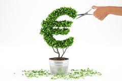 Planta em pasta com forma de EUR rendição 3d Fotos de Stock