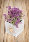 Planta en conserva decorativa en el fondo de madera, decoratio casero Foto de archivo