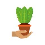Planta en el ejemplo del vector del pote Fotografía de archivo