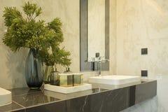 Planta en el florero para la decoración en el lavabo, accesorios del cuarto de baño Foto de archivo libre de regalías