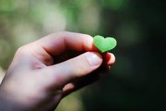 Planta en forma de corazón en la mano masculina fotos de archivo