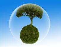 Planta en una burbuja libre illustration