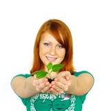 Planta feliz bonita da terra arrendada da mulher nova Fotografia de Stock