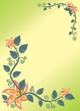 Planta florida Foto de archivo libre de regalías
