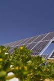 Planta fotovoltaica Fotografía de archivo libre de regalías