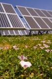 Planta fotovoltaica Imágenes de archivo libres de regalías