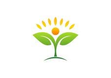 Planta, gente, natural, logotipo, salud, sol, hoja, botánica, ecología, símbolo e icono Fotos de archivo libres de regalías
