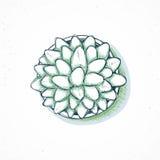 planta hecho a mano, flor en estilo del bosquejo Imagen de archivo libre de regalías