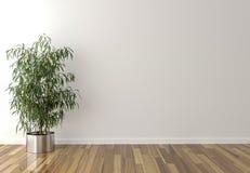 Planta interior a solas y pared en blanco en fondo Fotos de archivo