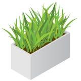 Planta isométrica no potenciômetro moderno Imagens de Stock Royalty Free