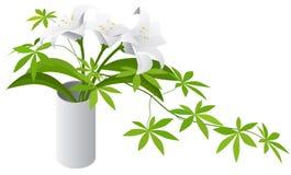 Planta isométrica no vaso de vidro moderno Imagens de Stock