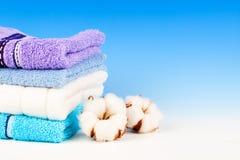 Planta macia do algodão com matéria têxtil Fotografia de Stock