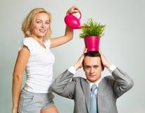 Planta molhando Foto de Stock Royalty Free