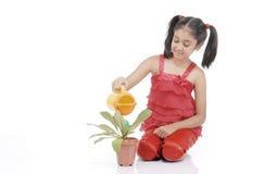 Planta molhando da menina do jardineiro fotos de stock