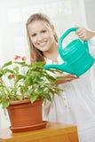 Planta molhando de mulher nova Fotografia de Stock
