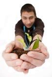 Planta nas mãos Imagem de Stock Royalty Free