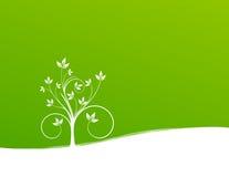 Planta no fundo verde ilustração do vetor
