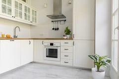 Planta no interior branco da cozinha com armários e o fogão de prata imagem de stock royalty free