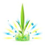 Planta nova Ilustração do Vetor