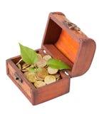 A planta nova faz a maneira através das moedas de ouro Foto de Stock Royalty Free