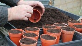 Planta o macetas de relleno con estiércol vegetal almacen de video