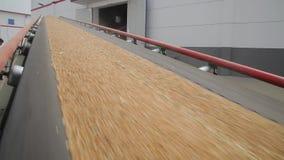 Planta para el almacenamiento y procesar del grano almacen de metraje de vídeo