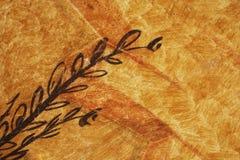 Planta pintada en la pared Imagen de archivo libre de regalías