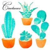 Planta pintada a mano del cactus de la acuarela y planta suculenta en pote Clipart de la acuarela, maceta individual aislada ence Foto de archivo libre de regalías