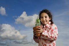 Planta poted explotación agrícola de la muchacha fotografía de archivo libre de regalías