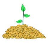Planta que cresce da pilha de moedas de ouro Fotos de Stock Royalty Free